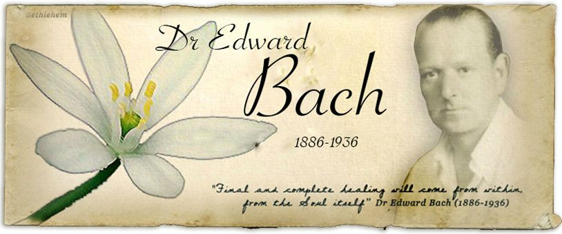 Bach with quote